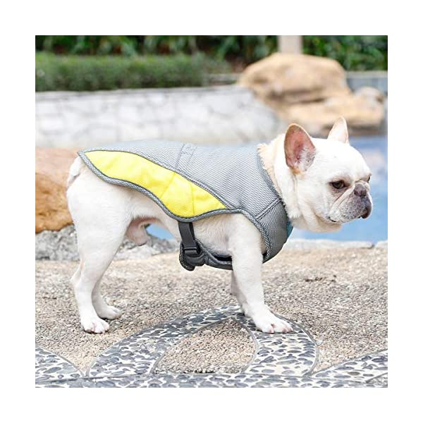 """Rantow Dog Cooling Vest Harness Outdoor Puppy Cooler Jacket Reflective Safety Sun-proof Pet Hunting Coat, Best for Small Medium Large Dogs (XS(Chest 14.17""""-17.33"""")) 3"""