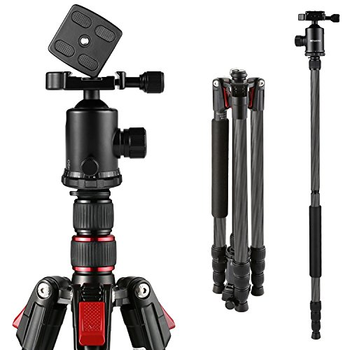 BC Master Carbon Fiber 2-in-1 Tripod Monopod Kit, 80-inch Universal Dslr Camera Tripod with Bag, Ball Head, Bubble Level, Quick Release Plate for Canon Nikon YouTube, TC533M Weight: 3.2lbs by BC Master