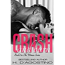 Crash and Burn (The Witness Series Book 6)