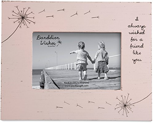 Dandelion Wishes Picture Frame Friend Like You Pink Rustic 4x6