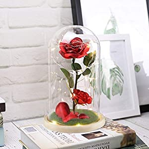 URBANSEASONS Beauty and The Beast Rose Enchanted Rose,Red Silk Rose and Led Light with Fallen Petals in Glass Dome on Wooden Base, for Valentine's Day Wedding Anniversary Mother's Day Birthday Party 8