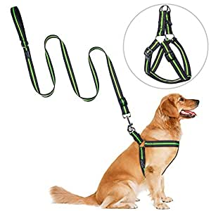 Step-in Dog Harness Leash, PETBABA Reflective Soft Dog Vest Harness with Quick Release Buckle for Dogs Green L