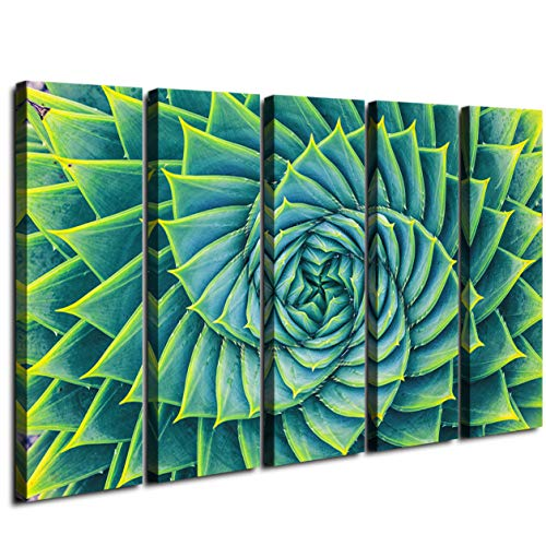 - Extra Large Wall Art Succulent Aloe Agave Canvas Prints Decor Spiral Blooming Green Flower Plant Framed Printing Rotating Beautiful Taste Modern Realism Painting Home Decorations 5 Panel 60 Inch Total