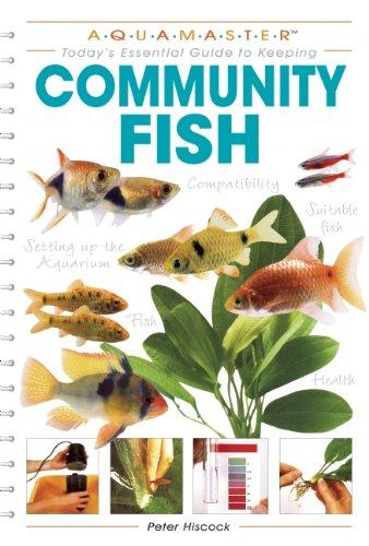 Community Fish (Aquamaster)