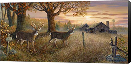 (Unknown Sanctuary by Terry Doughty Canvas Art Wall Picture, Museum Wrapped with Black Sides, 24 x 12 inches)