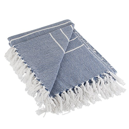 DII Woven Throw Blanket Rustic Farmhouse Thin, 50x60 with 2.5 fringe, French Blue Stripe