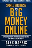 img - for Small Business Big Money Online book / textbook / text book
