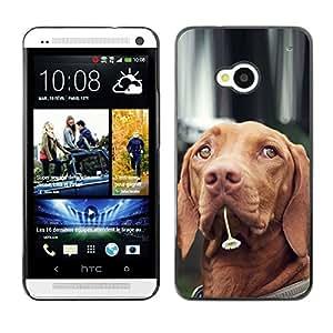 Vortex Accessory Carcasa Protectora Para HTC ONE ( M7 ) - Vizsla Dog Breed Canine Flower Cute Pet -