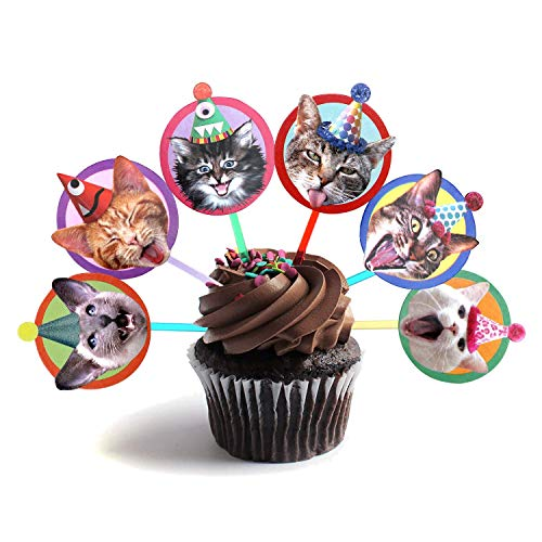 - Birthday Cats Cupcake Toppers - Set of 6 different cat heads party decorations