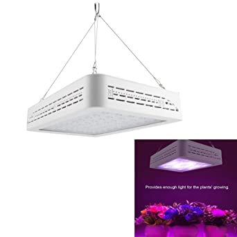 Plante Lampe 60 Floraison De 600w Led Pour ebHWD9IEY2