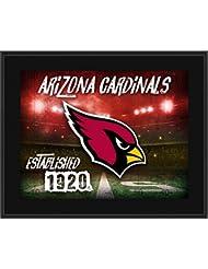 "Arizona Cardinals 10.5"" x 13"" Sublimated Horizontal Team Logo Plaque - NFL Team Plaques and Collages"