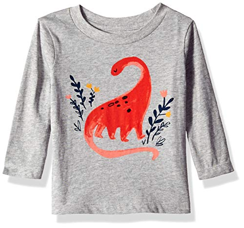 Gymboree Baby Girls Long Sleeve Graphic Tee, Flying Floral 12-18 Mo from Gymboree