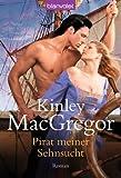 Pirat meiner Sehnsucht: Roman