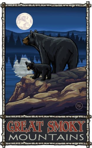 Northwest Art Mall Great Smoky Mountains Black Bear in Moonlight North Carolina Wall Art by Paul A Lanquist, 11 by - Malls Beach In South