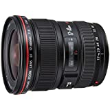Canon EF 17-40 MM F/4L USM - Objetivo para Canon (distancia focal 17-40mm, apertura f/4) color negro