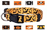 Native Pup Halloween Dog Collar (Small, Orange Skull and Crossbones)