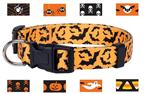 Native Pup Halloween Dog Collar (Small, -