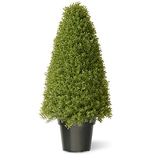 National Tree 36 Inch Boxwood Tree in Green Pot (LBX4-36) by National Tree Company