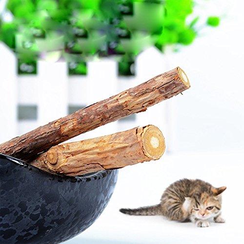 Windspeed Pet Catnip Sticks Chew,Dental Health Catnip Teeth Brush Matatabistic Bar Pet Treat Toys Pack of 2