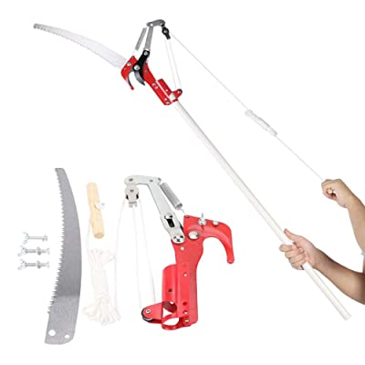 Ciglow Extendable Tree Trimmer Pole Saw & Pruner Long Tree Pruner Pole Saw Tree Trimmer(Rod not Included) : Garden & Outdoor