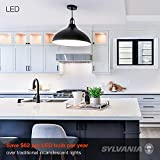 LEDVANCE 74766 LED Light Bulb, 24