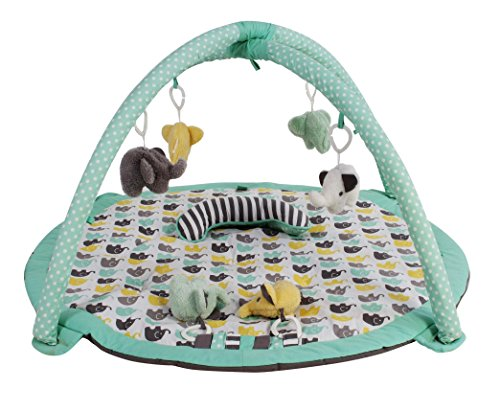 Bacati Elephants Unisex Activity Gym with Mat, Mint/Yellow/Grey