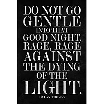 """Framed DYLAN THOMAS quote /""""Do Not Go Gentle Into That Good Night/""""Vintage"""