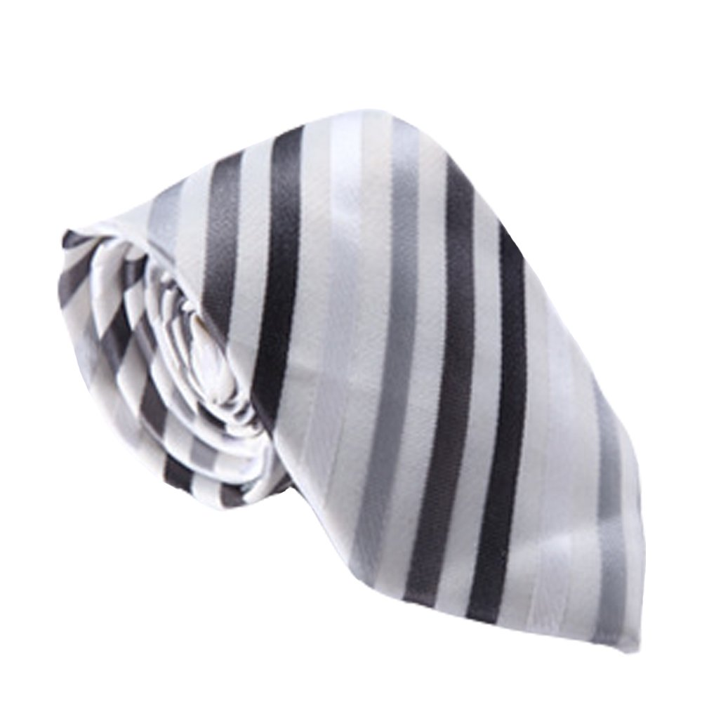 Dig Dog Bone Mens Tie Stripe Necktie Silver and Gray Black Striped Jacquard Weave Men Tie Gift Box for Business Office Party Date
