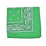 Paisley 100% Polyester Unisex Bandanas 15 Pack Bulk Wholesale