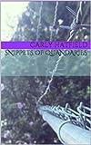 Snippets of Quandaries