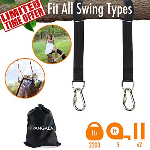 2018 New | Tree Swing Hanging Straps Kit Holds 2200 lbs 5-ft Extra Long | Safer Lock Snap Carabiner Hooks | Perfect for Tree Swing & Hammocks Carry Pouch Bag | Heavy Duty | Adjustable ()