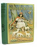 img - for WARD LOCK & CO'S WONDER BOOK book / textbook / text book