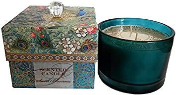 Amazon.com  Punch Studio Peacock Sweet Blossoms 2-Wick 12 Oz. Candle ... 3c25c69d1af49