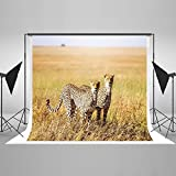 brave brothers - Kate 7x5ft Yellow Golden Grass African Grasslangd Cheetah Brother Animal Brave Children Holiday Backdrop Photography Background
