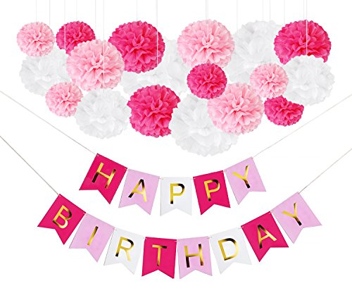Octoritti DIY Pink Birthday Party Decorations - Tissue Paper Flower Pom Poms and Happy Birthday Banner for Girls and Women - Hot Baby Pink White Gold - Unicorn Princess Paris Theme - Hot Pink Kitty