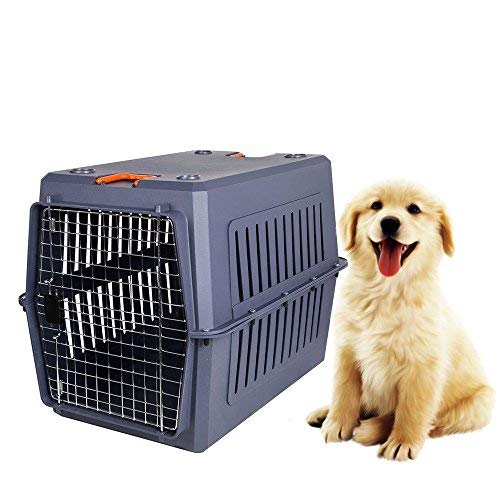 Livebest Portable Plastic Hard-Sided Pet Carrier Crate Outdoor Kennel Car Travel Box for Small Animals (XL, Blue)