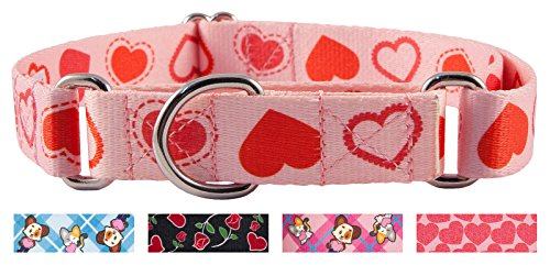 Country Brook Design Happy Hearts Martingale Dog Collar-XL -