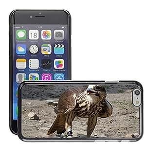 "GoGoMobile Slim Protector Hard Shell Cover Case // M00118366 Buzzard Animal Bird Raptor // Apple iPhone 6 PLUS 5.5"""