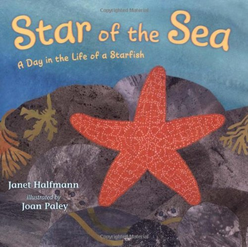 Star of the Sea: A Day in the Life of a Starfish (Star Of The Sea By Joseph O Connor)
