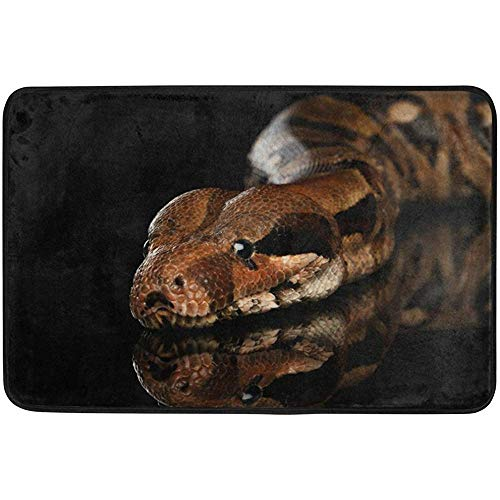 (didiandf Snake Boa Constrictor Doormat 15.7 x 23.6 inch, Living Room Bedroom Kitchen Bathroom Decorative Lightweight Foam Printed Rug)