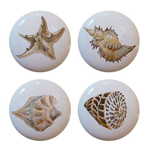 Set of 4 Ceramic Seashell Sea Shell knobs or Cabinet Drawer Pulls