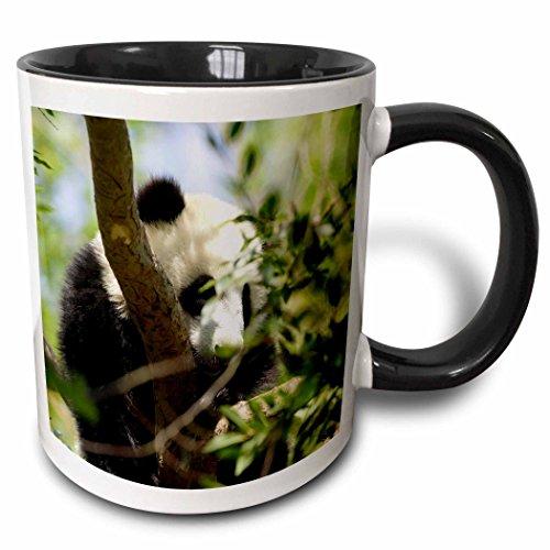 3D Rose mug_88550_4