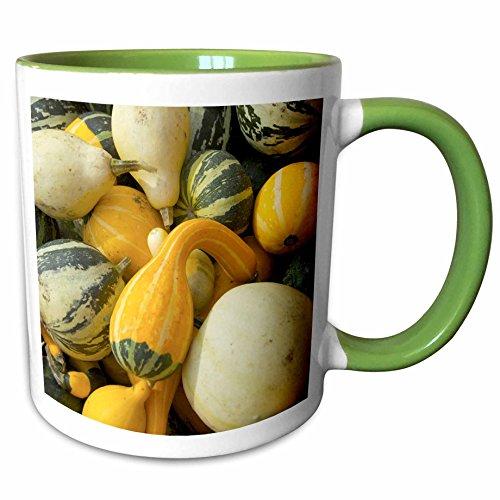 3dRose Danita Delimont - Farms - Massachusetts, Natick, Lookout Farm, gourds - US22 LEN0234 - Lisa S. Engelbrecht - 11oz Two-Tone Green Mug - Outlets Natick