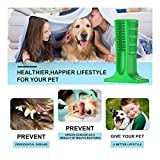 Viet's Toothbrush Dogs - Bristly Brushing Stick, Tooth Brush Chewing Stick Toothbrush Dogs, Pets Oral Care, Doggy Brushing Stick - Medium Size (25-40lbs Dogs)