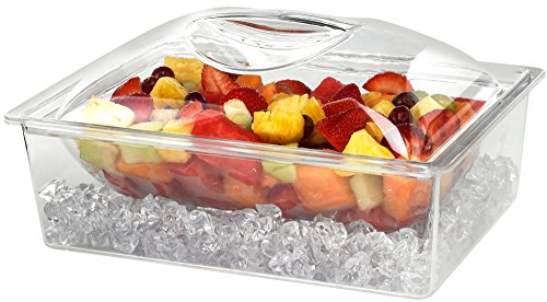 Tropix Acrylic Chiller Container Appetizers product image