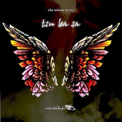 Ba Wings - 4