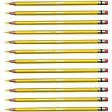 Prismacolor Col-Erase Erasable Colored Pencil CANARY YELLOW Set/12