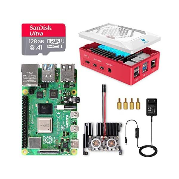 LABISTS Raspberry Pi 4 8GB RAM Starter Kit with 128GB Micro SD Card (8GB RAM)