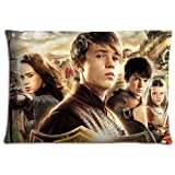 16x24 inch 40x60 cm bedding pillow shell case