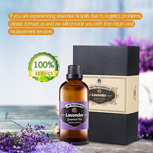 Aceite Esencial de Lavanda Puro aceite 100% orgánico, prensado en frío, filtrado y sin quemar, para pelo, piel, barba, cuerpo y uñas